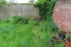 Garden-visit-210604-23