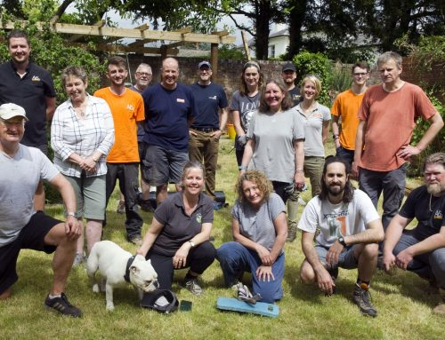 Our amazing garden makeover – June 11th & 12th
